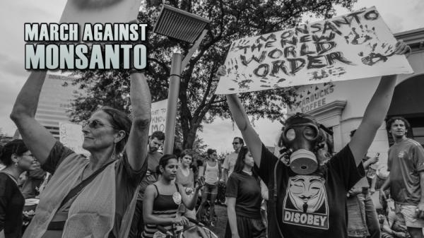 Houstonian's March Against Monsanto